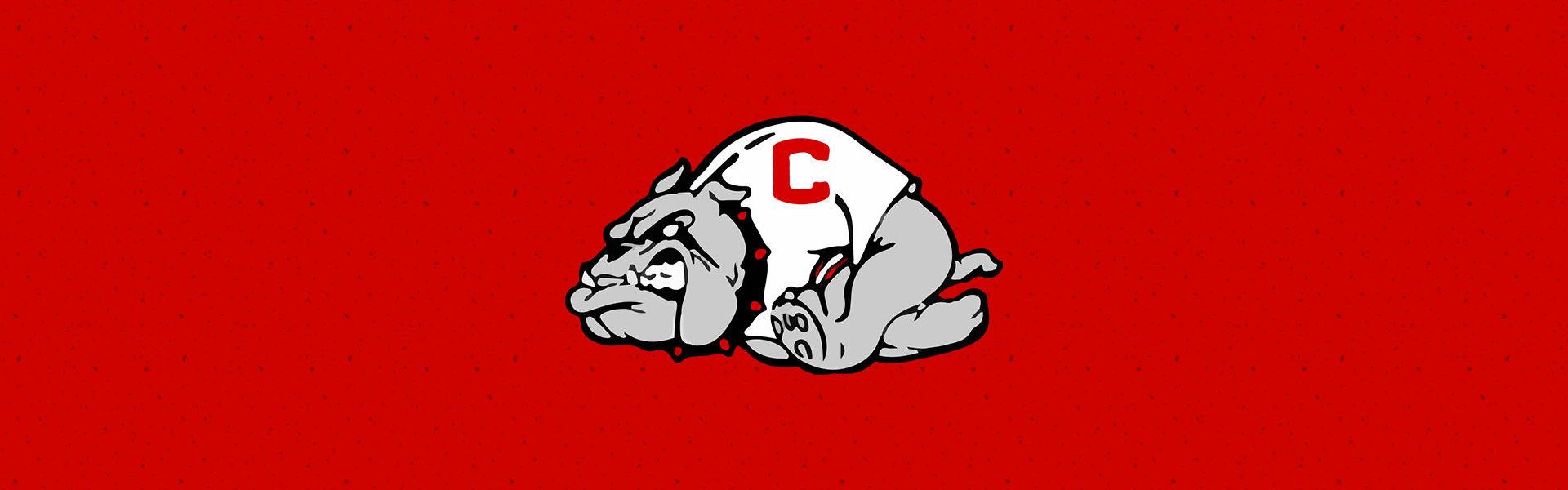 crestview high school bulldogs banner