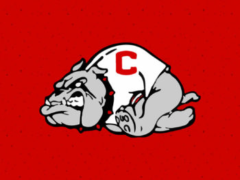 crestview high school bulldogs banner