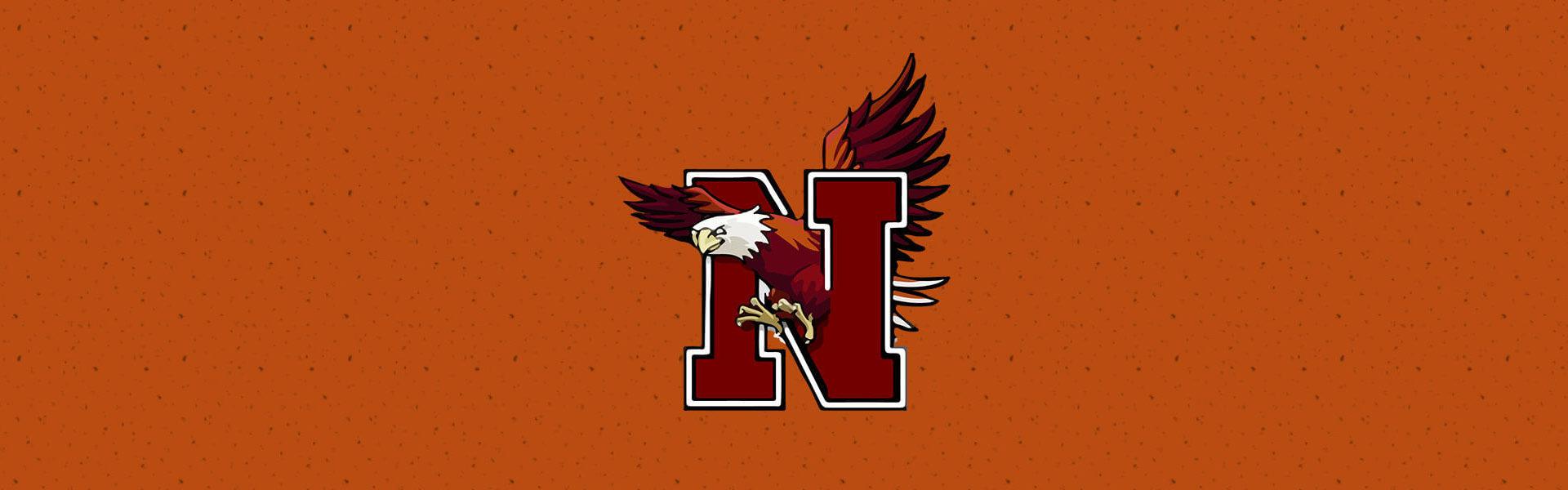 Niceville high school eagles banner
